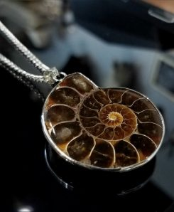 Necklace-Ammonite-Fossil-pendant-Silver