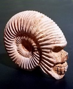 Ammonite-Skull-Carved-Fossil