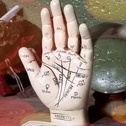 Vintage Palmistry Hand Fortune Telling Occult