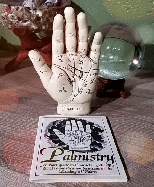 Vintage Palmistry Hand Fortune Telling