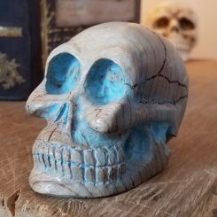 Large Carved Wood Skull, Myrtle Wood, Artwork Oddity Store Oregon Turquoise Skull
