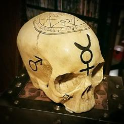 Realistic-Human-Skull-Alchemy-Skull-Occult-Items