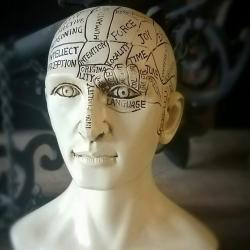 Phrenology Bust, Vintage Medical