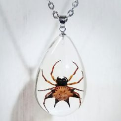 Real Spider Pendant, Real Insect Jewelry, Insect in resin, Insect in Lucite