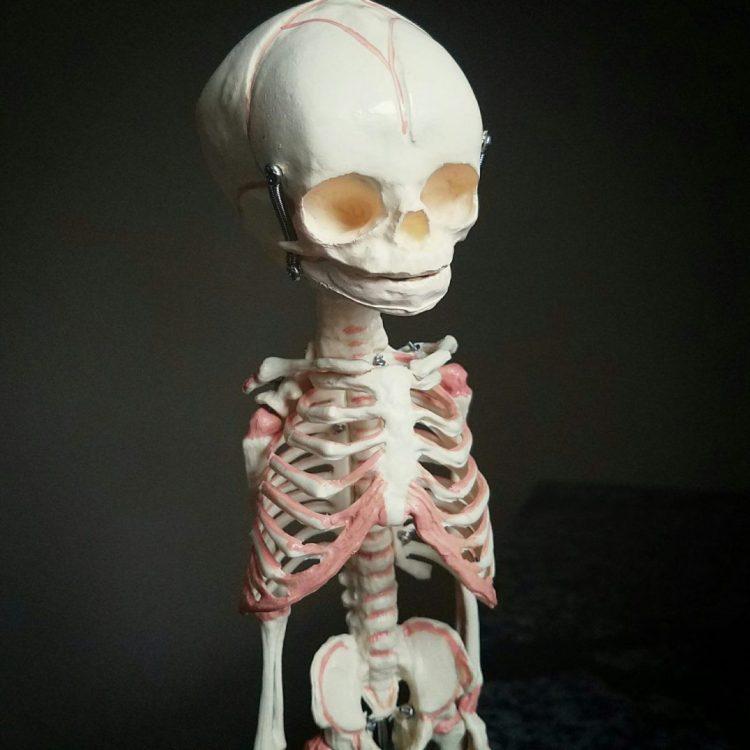 Human Fetal Skeleton, Fetus Skeleton, Oddities, Curiosities, Creepy, Weird, Realistic Skull