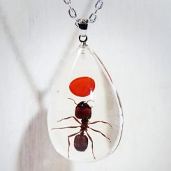 Lucky Charm, Real Ant, Real Insect in Resin, Insect in Lucite