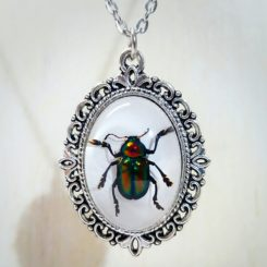 Real Insect Jewelry, Beetle Necklace