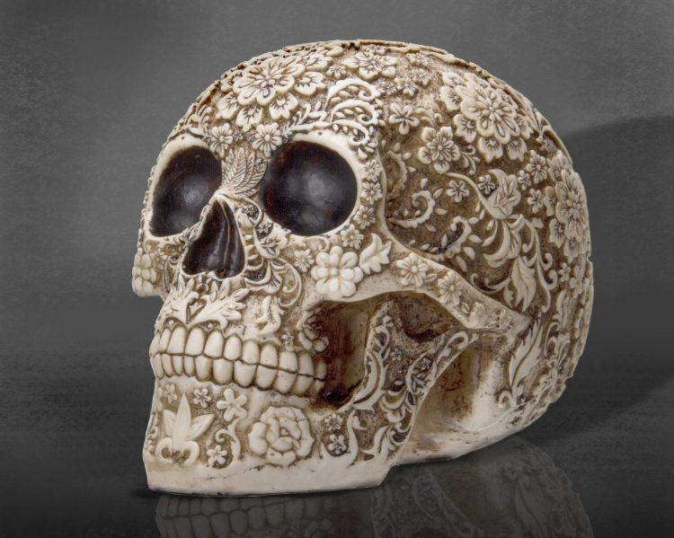Floral Skull,Gothic Decor,Oddities, Curiosities