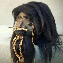 Real Shrunken Head Replica, Oddities, Curiosities, Creepy Stuff