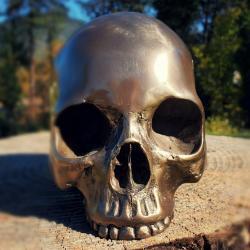 Bronze Human Skull, Oddities, Gothic Decor, Bronze Skull