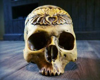 Tibetan human skull, best human skull replica, oddities, curiosities