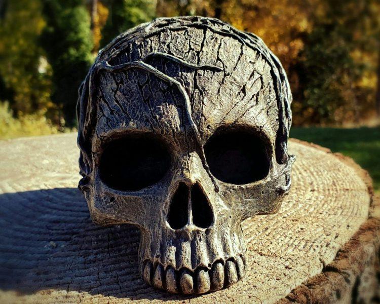 Tree Spirit Skull, Human Skull Replica, Occult Skull