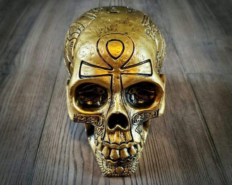 Egyptian Skull, Ancient Egyptian, Human Skulls