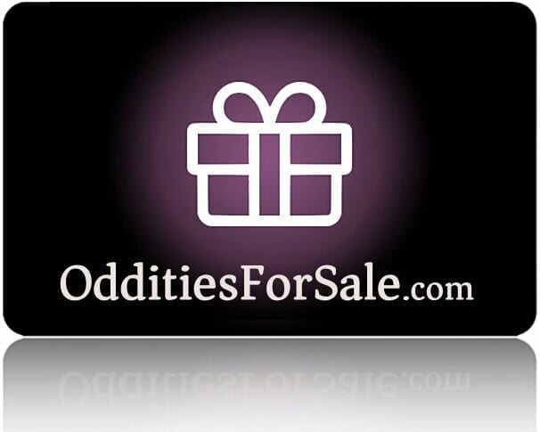 Gothic Gift Ideas, Oddities Gifts, Gothic Gift Card