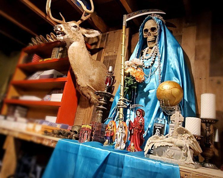 Oddities For Sale, Oddities Curiosities, Oddities Shop Oregon, Weird Stuff Oregon
