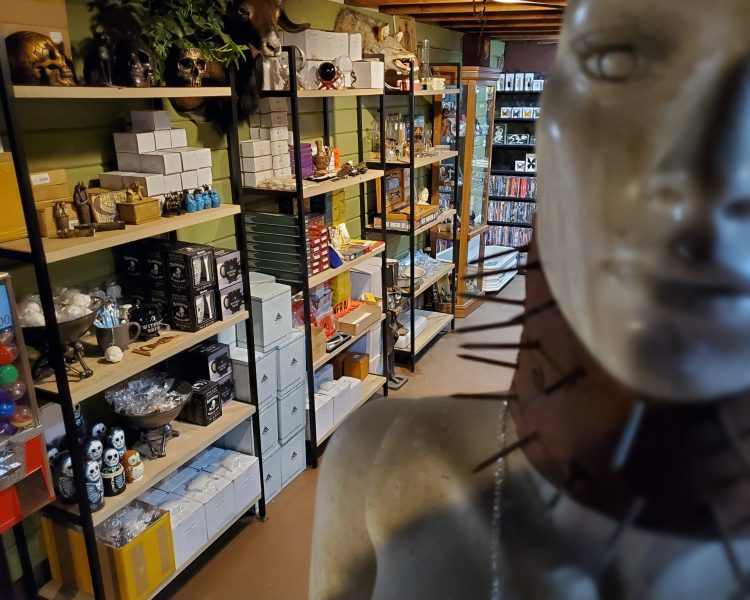 Oddity Shop Grants Pass Oregon, Oddities For Sale