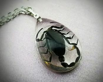 Real insect in resin, Black Scorpion Necklace, Gothic Jewelry