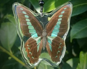 Real Butterfly Necklace, Insects In Resin, Blue Bottle Butterfly Window Hang