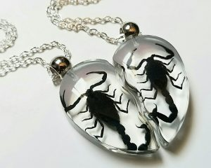 Real Insects In Resin, Real Scorpion Necklace, Oddities, Curiosities