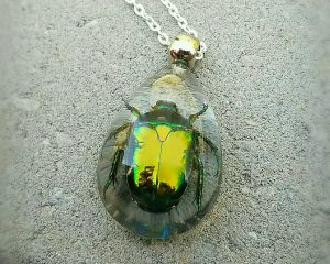 Real Insect Jewelry, Real Beetle Necklace, Insects In Resin